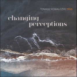 Tomasz Kowalczyk Trio: changing percetions