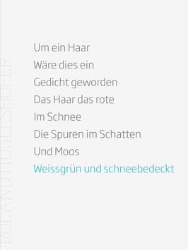Roland Hugelshofer ‹Um ein Haar›