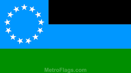 The World Government Flag