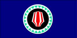 Bougainville Flag