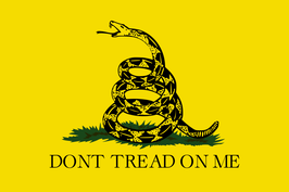 Gadsden-Tea Party Flag