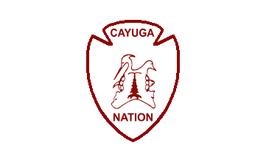 Cayuga Nation of New York Flag