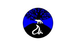 Mashantucket Pequot Tribal Nation Flag