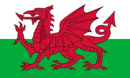 Wales Flag / Y Ddraig Goch
