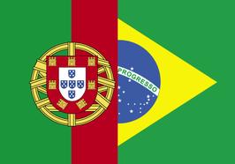 Portuguese Language Flag