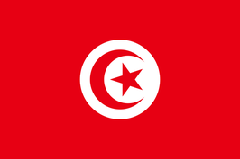 Tunisia Flag / علم تونس