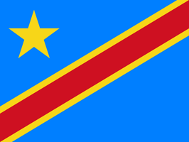 Dem. Rep. of the Congo Flag / Drapeau de la RDC