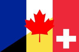 French Language Flag