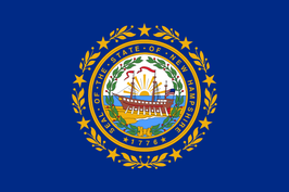 New Hampshire (NH) Flag