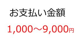 お支払いカート(1,000~9,000円)