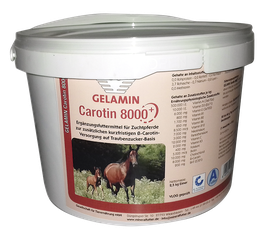 GELAMIN Carotin 8000 Plus