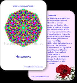 "Lichtseelen-Set ""Herzensrose"""