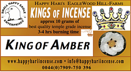 (HH) King of Amber