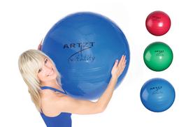 ARTZT vitality Fitness-Ball