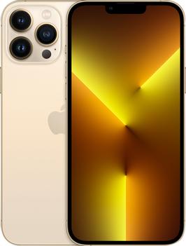 iPhone 13 Pro Max Reparatur