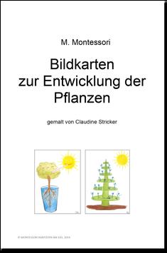 BM103: Bildkarten zur Entwicklung der Pflanzen
