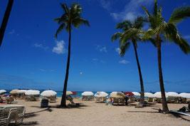 ハワイオアフ島ワイキキビーチ ヒルトンハワイアンビレッジ前のビーチ 日本語貸切タクシー チャーター観光にて