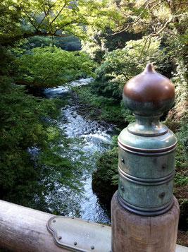 山中温泉こおろぎ橋からみる清流〜お盆休みに実家のある石川県に帰省。その時立ち寄ったこおろぎ橋です。昔樋口可南子さん主演のNHK朝の連ドラで舞台になったところですよ。ここも猛暑でしたが、この風景には癒されました〜