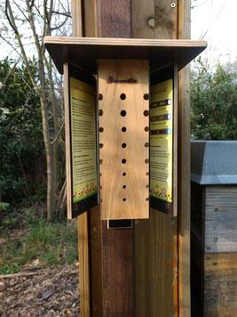 Wildbienen Beobachtungskasten