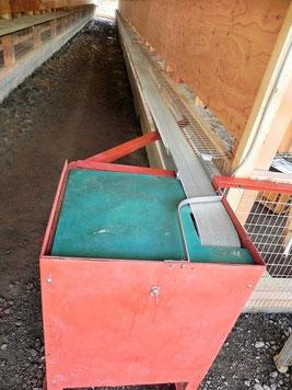 巣箱の外に出たたまごをベルト動いてコロコロと運んでくれます。