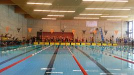 Schwimmbad Oberursel hallenbad in wiesbaden wir gebaut lfd swim team