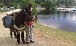 Mit einem Esel um den See von Vassiviere wandern