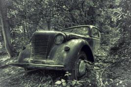 Neues von den Oldtimern - Der Skulpurenpark des Herrn F.