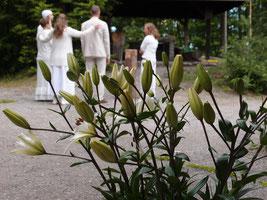 Rituale, Ritualbegleitung bei Hochzeit, Taufe, Lebensübergang