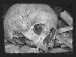 Verdun, Verdunbilder, Rene Reuter, Bodenfunde, Knochen