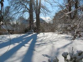 und jetzt noch einige Winterbilder...