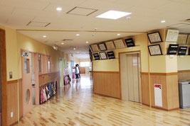 ホールに続く廊下に750DSを2台設置し、陽だまりの空間に。紫外線をカットした優しい光が廊下にあふれます。