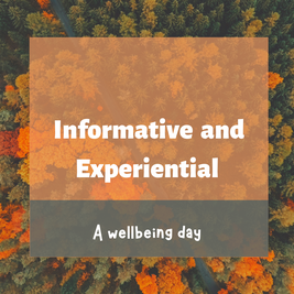 mindfulness, mindfulness course, the mindful GP, mindful GP, health, wellbeing, self care, community courses, self help, public courses, mental health, stress, anxiety, chronic illness