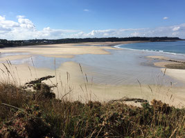 Vue du haut de la plage des Sables d'Or les Pins à la marée basse. On peut y admirer les ajoncs en fleur et le sable clair