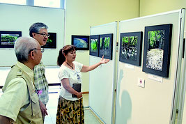大塚勝久さんが撮影したサガリバナや自然風景の写真が展示されている=24日午後、市立図書館