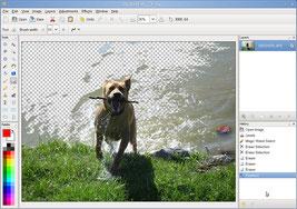 User Interfave of Pinta © Pinta project