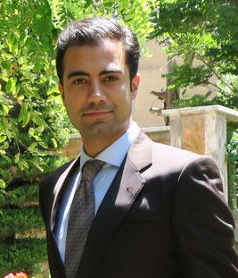 Seyyed Amir Vafaei