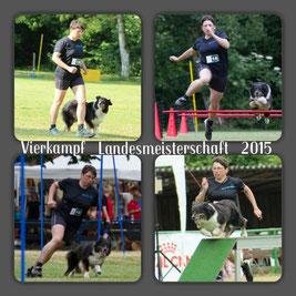 VK3 LV-M 2015