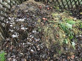 Foto: Komposthaufen