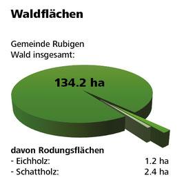 Weitere Informationen zum Thema Wald erhalten Sie in den FAQ der Gemeinde Rubigen.