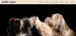 Japan Akita, Hund, Zucht, Hundezucht, Japan Akita e.V., Tibet Terrier, Ulrike Kreher, Main Tibet Terrier, Sakhi Oyas