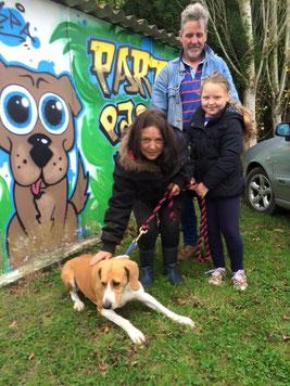 Adoption de £Princesse - chienne du refuge de Bréhand - SPA en Côtes d'Armor - Grand Ouest - Association Liberté pour chiens