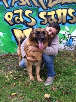 adoption chien de refuge - société protectrice animaux - Bréhand (22) - Bretagne