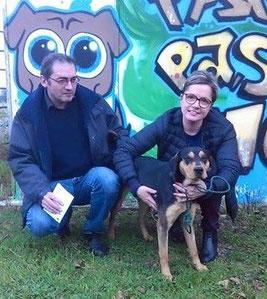 adoption chien de refuge - SPA du Penthièvre - Bréhand - proche Lamballe - 22