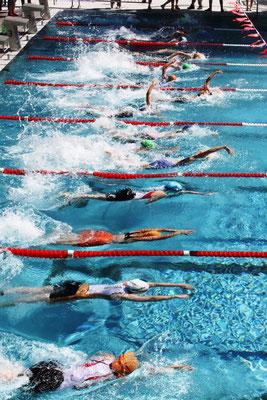 Anja Weber - Schwimmerin / Biathletin / Langläuferin /Triathletin