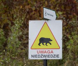 Bild: Hinweisschild zur Warnung vor Bären