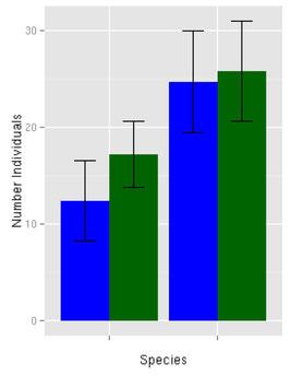 Bild: Bionum- Hilfe und Beratung in Biostatistik: vergleich von Mittelwerten, Statistik Ökologie