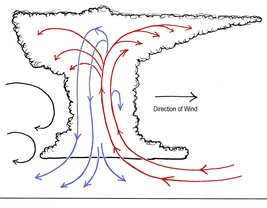 air circulation within a thunderstorm