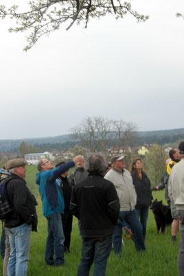 2. naturkundlicher Spaziergang bei Langenalb - Erläuterungen durch Herrn Dr. Aly (G. Franke)