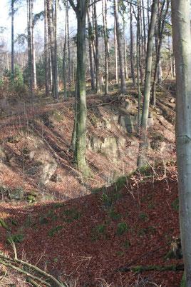 Kälberklamm - unterster Teil in Höhe Steinbrüche, am Spinnereiweg (G. Franke, 27.12.15)
