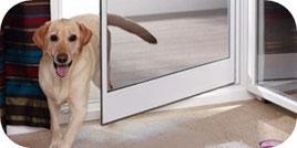 Katzengewebe in der Fliegentür , stabiles Insektenschutzgitter, wenn Sie Haustiere haben